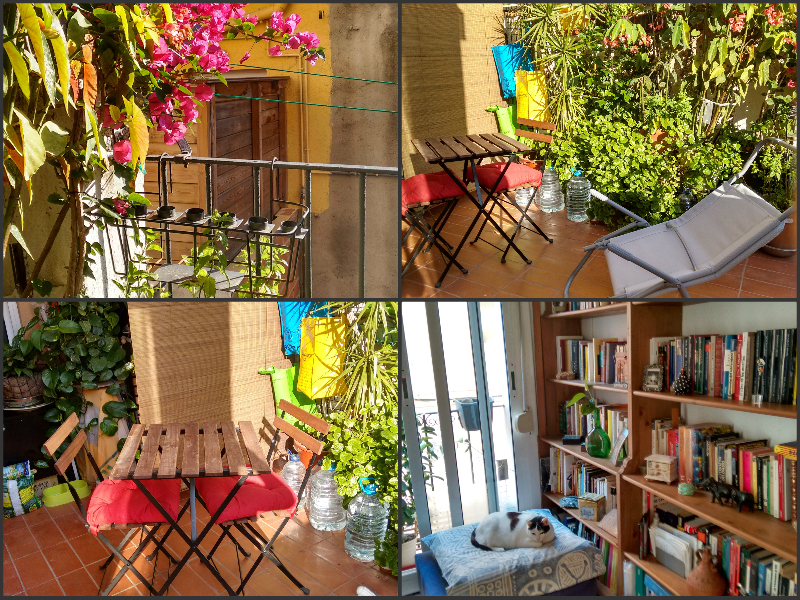 Our Air BnB apartment which had a cool sun deck and a cute cat